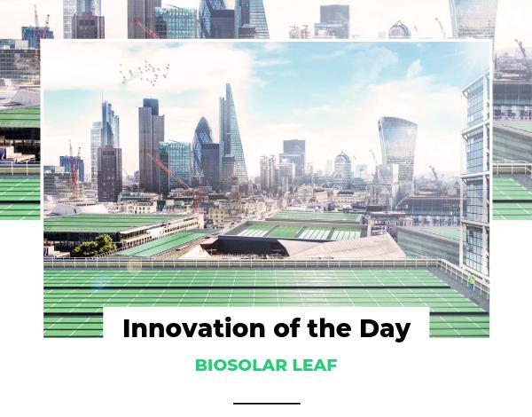 Innovation of the Day BIOSOLAR LEAF
