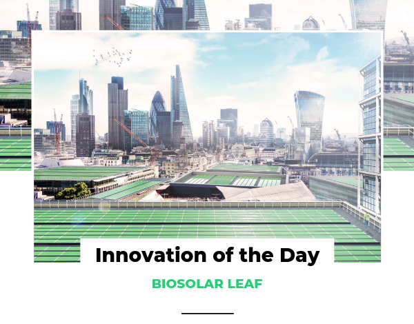 Innovation of the Day BIOSOLAR LEAF
