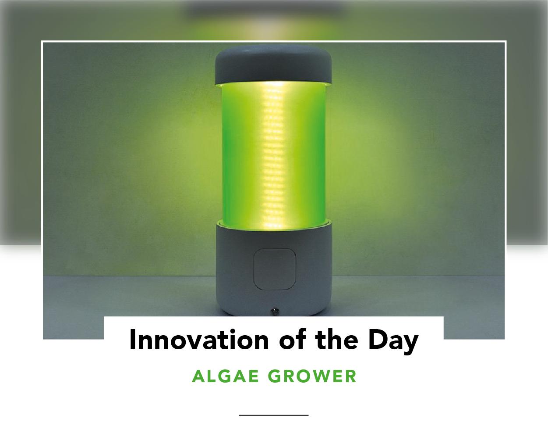 ALGAE GROWER 2-04