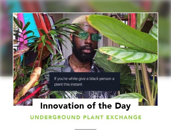 UNDERGROUND PLANT EXCHANGE-04
