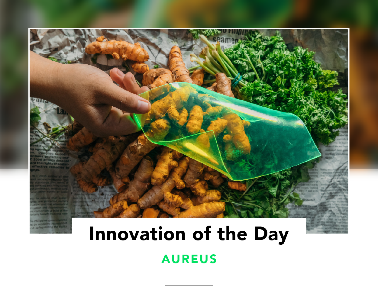 Innovation of the Day | Solar film by AuREUS uses crop waste to generate renewable energy