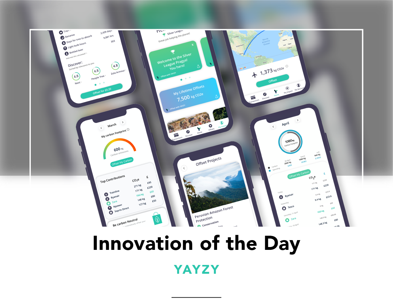 Various pages within Yayzy showing the app's features